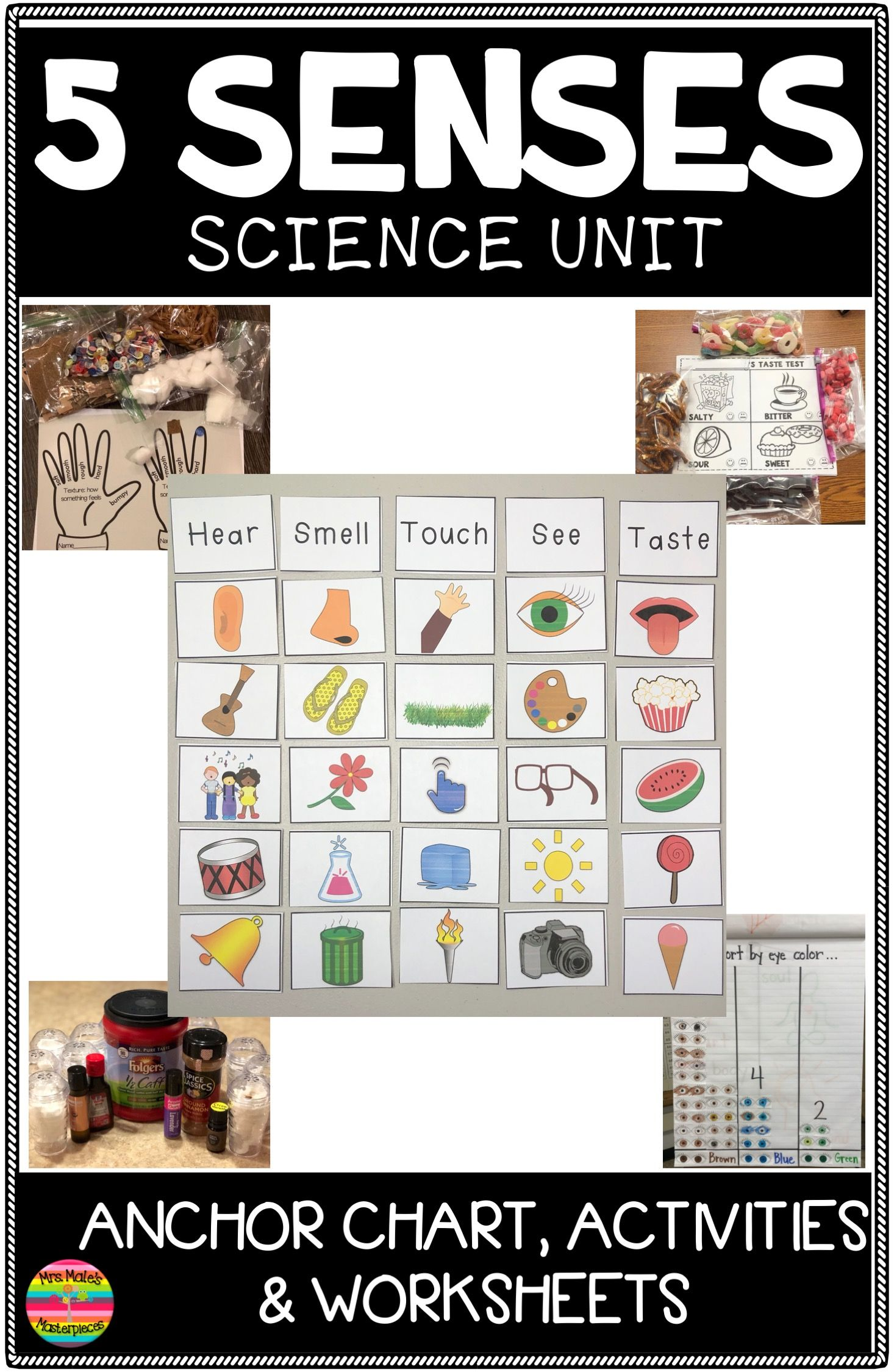 5 Senses Activities And Worksheets In