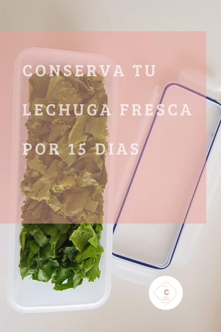 8 Ideas De Como Conservar La Lechuga Como Conservar La Lechuga Lechuga Fresco
