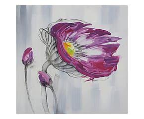 Dipinto su tela Papavero - 60x3x60 cm