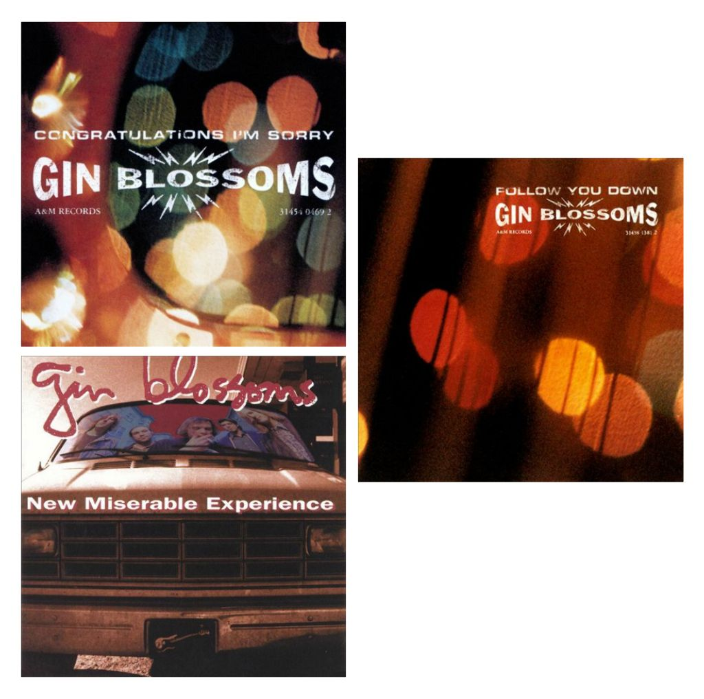 Selling on vFLea.com - CD Bundle - Gin Blossoms