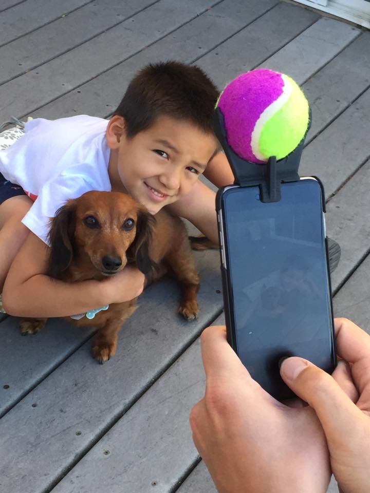 Ingenious Smartphone Attachment Helps Dogs Smile for a Selfie with Their Humans - My Modern Met