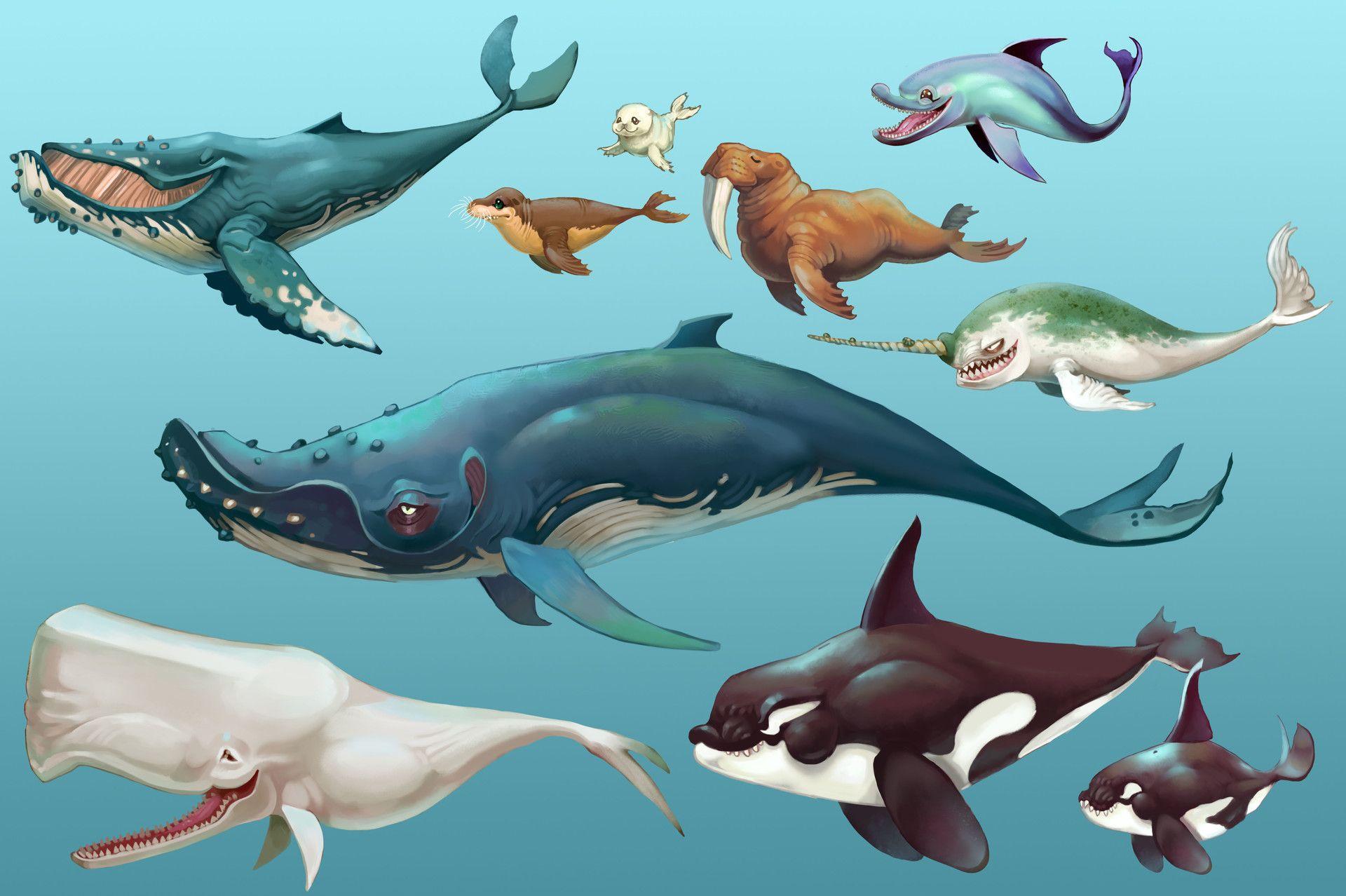 ArtStation   Hungry Shark World   Animal/Creature Concept Dump, Johanna  Cranston Spielicon,