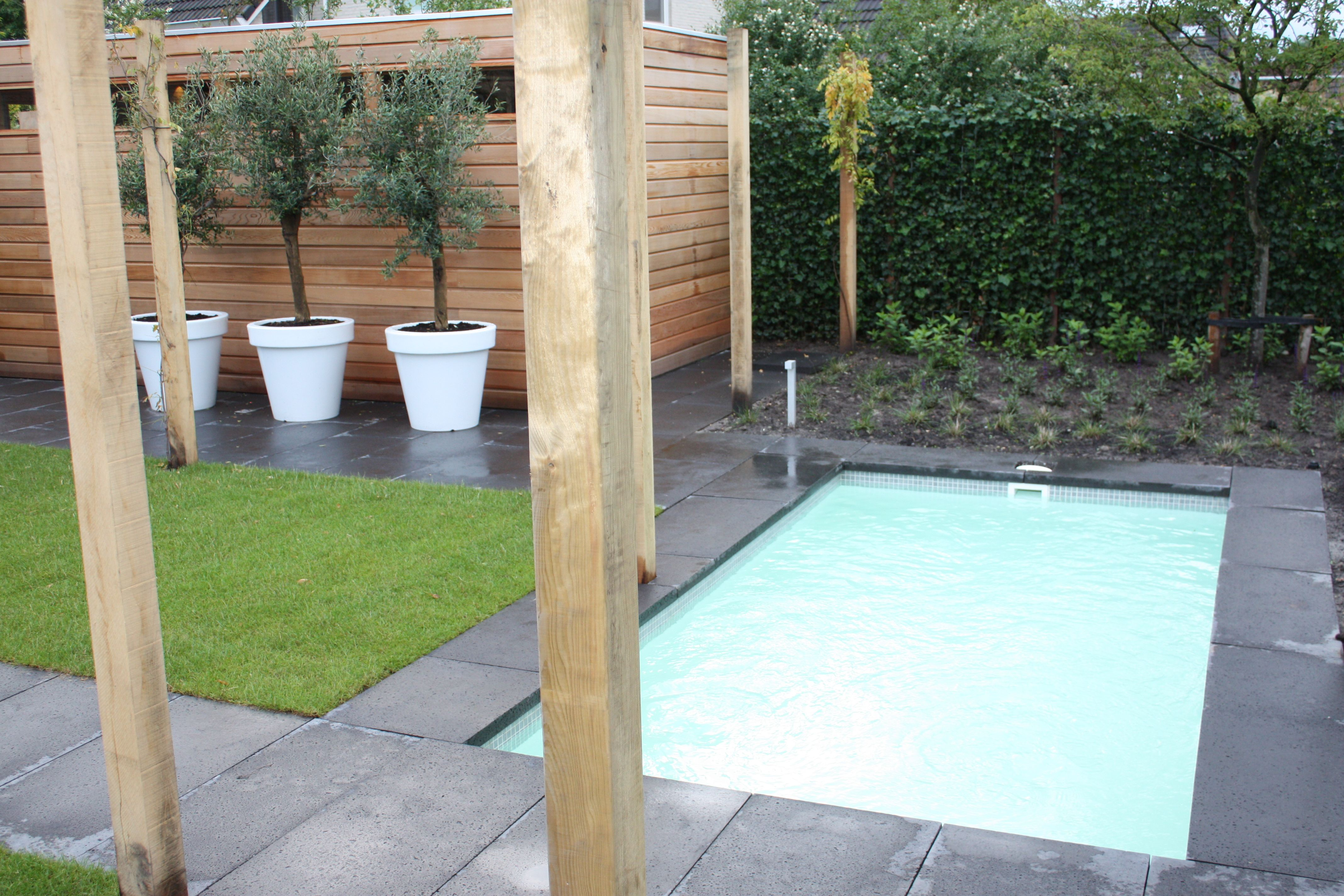 Klein zwembad in luxe tuin minipool in 2019 pinterest for Mini zwembad