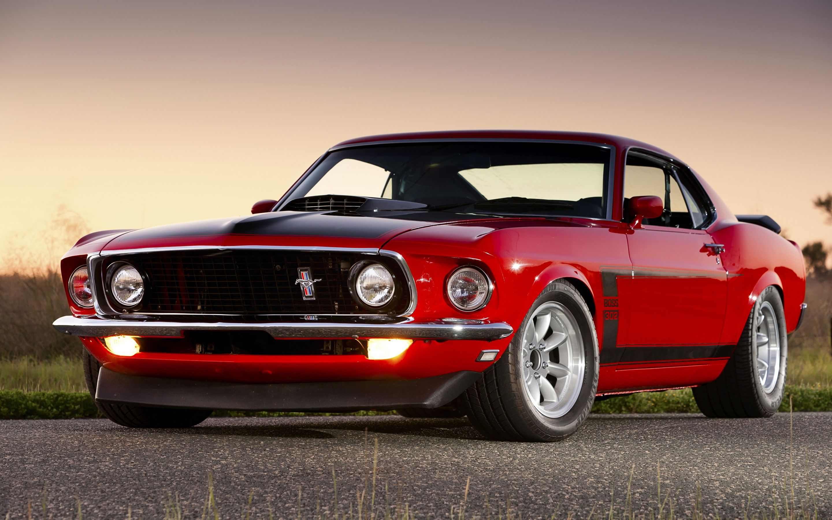 The Boss 302 Mustang is a high performance variant of the Ford
