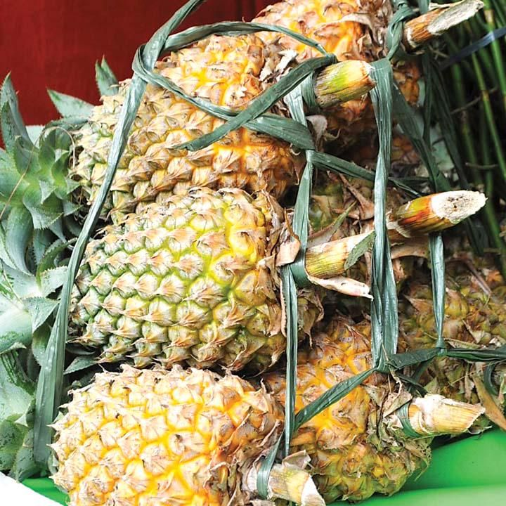 Spanish police arrest 3, seize cocaine hidden in pineapples - Read: http://bit.ly/1JiGcPo #BeFullyInformed