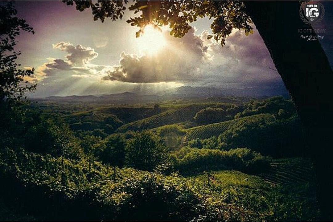 presenta ilbalo sulle colline di Gattinara Gattinara