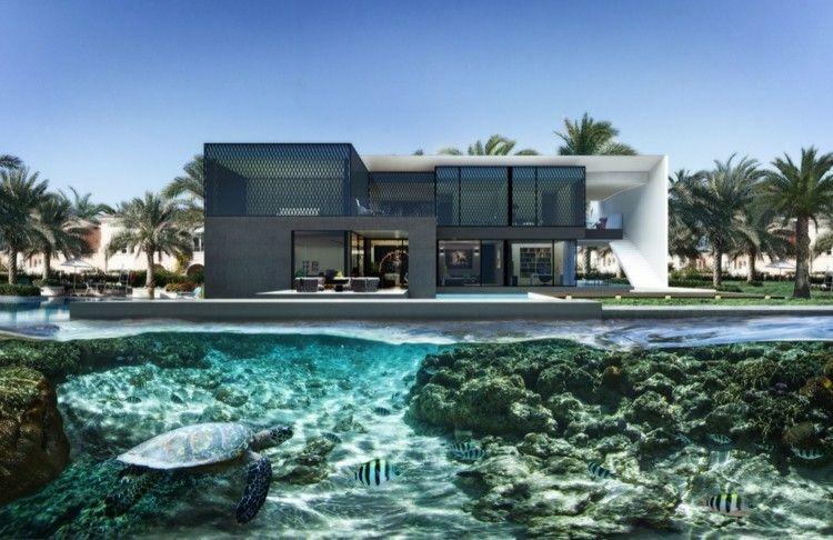 Schwimmbad Mit Schildkroten Und Fischen