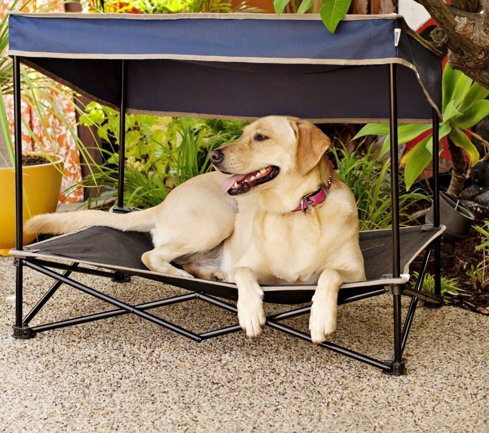 Dog Cot Canopy Bed Pet Sun Snow Shade Umbrella Folding Portable Elevated Raised Quikshadepets Dog Cots Cool Dog Beds Pet Hammock