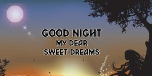 Good Night My Dear Quotes Good Night Quotes Night Quotes Good
