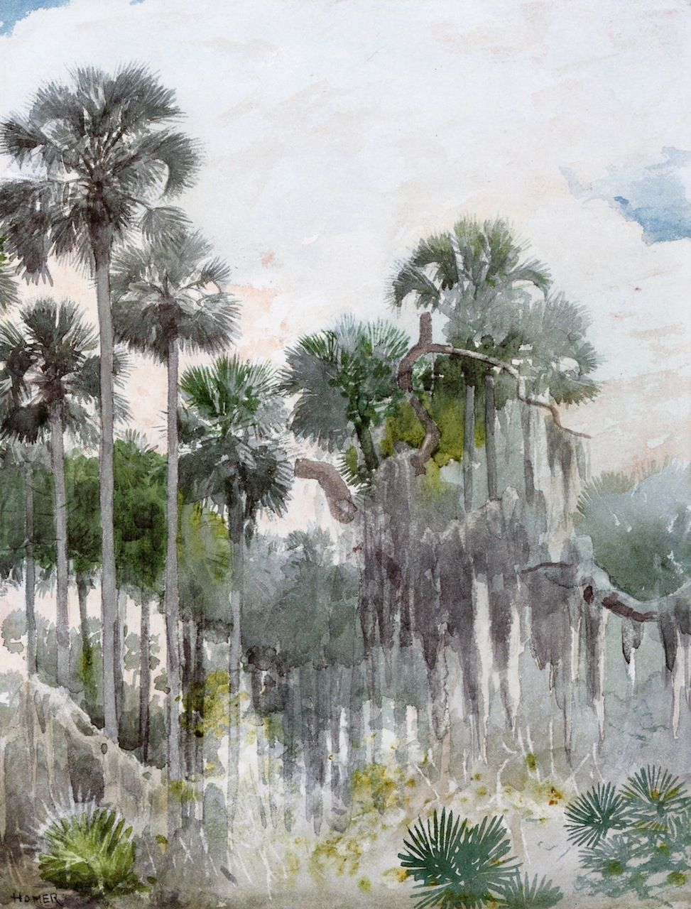 Watercolor artist magazine palm coast fl - Florida Jungle Winslow Homer 1886 Private Collection Painting Watercolor Height Cm In Width Cm In