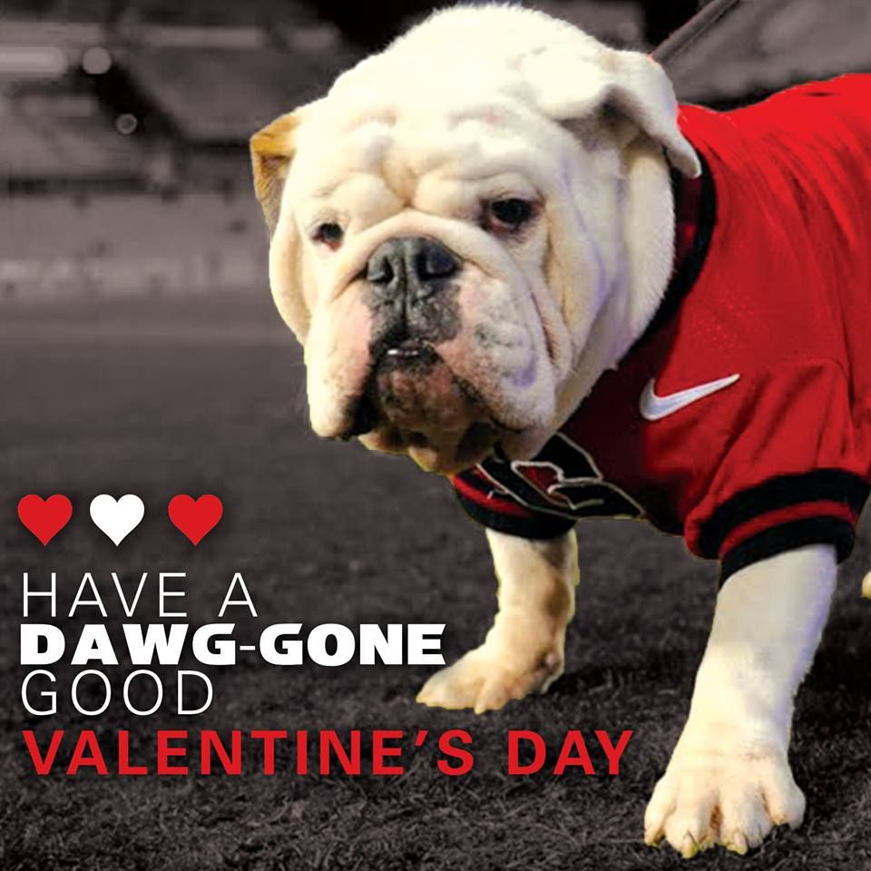 Georgia Football Valentine S Day Graphic Georgia Football