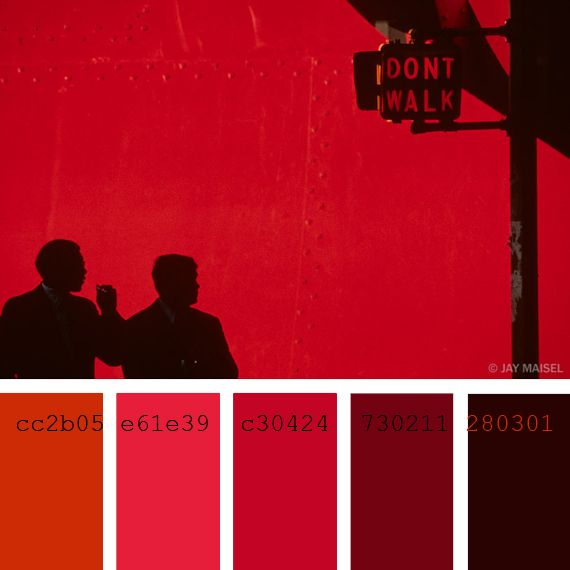 color palette inspired in Jay Maisel Photography