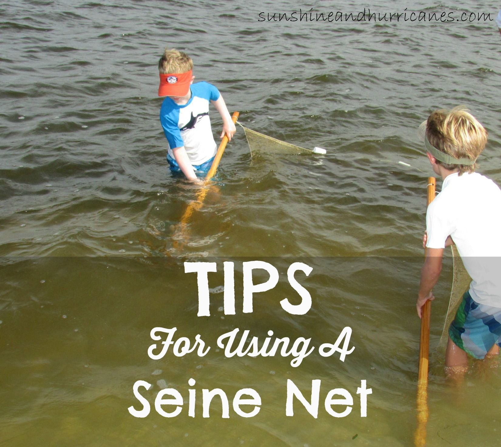 Seine Net Tips to catch and observe sea critters.