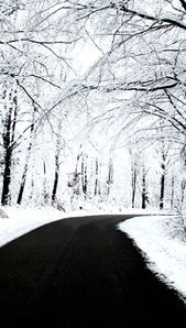 Fond d'écran d'iPhone Hiver-68   - Wallpaper iphone Winter #fondecranhiver