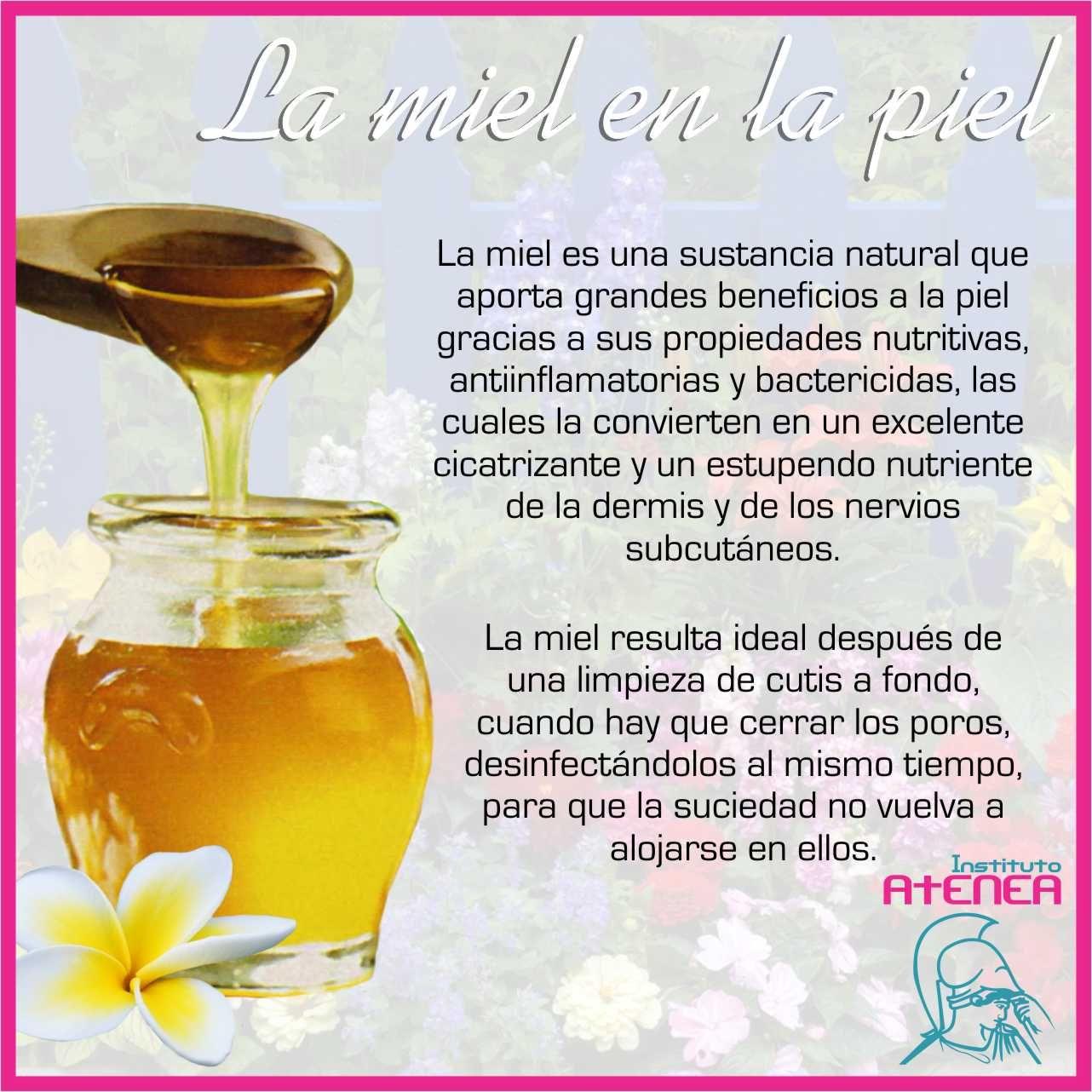 La miel es una sustancia natural utilizada en la cosmética desde hace cientos de años.  Tu también puedes utilizarla para diferentes tratamientos cosmetológicos.  Visita también nuestro blog donde encontrarás el articulo completo.  http://cosmetologiayesteticaatenea.blogspot.com/2014/03/la-miel.html