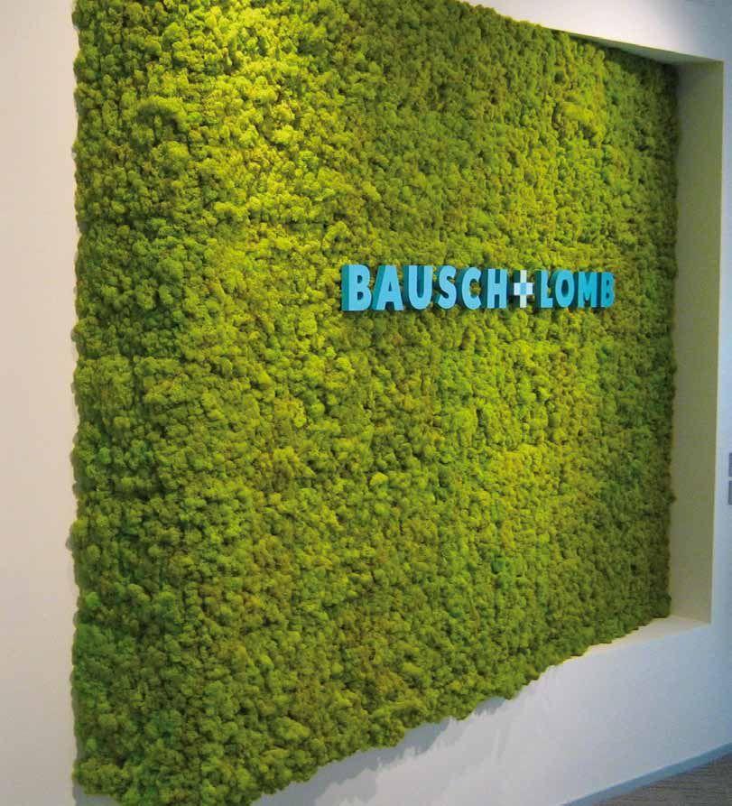 Revestimiento realizado con jardin vertical Mosswall. Diseño para oficinas, restauración, hoteles y contract. (Espacio Aretha partner contract)