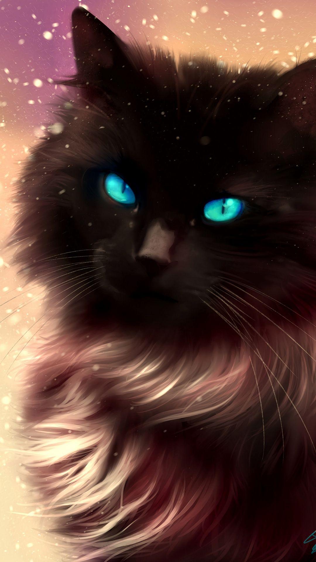 Art Blue Eyed Cat Infinity Wallpaper Cat Drawing Cute Cat