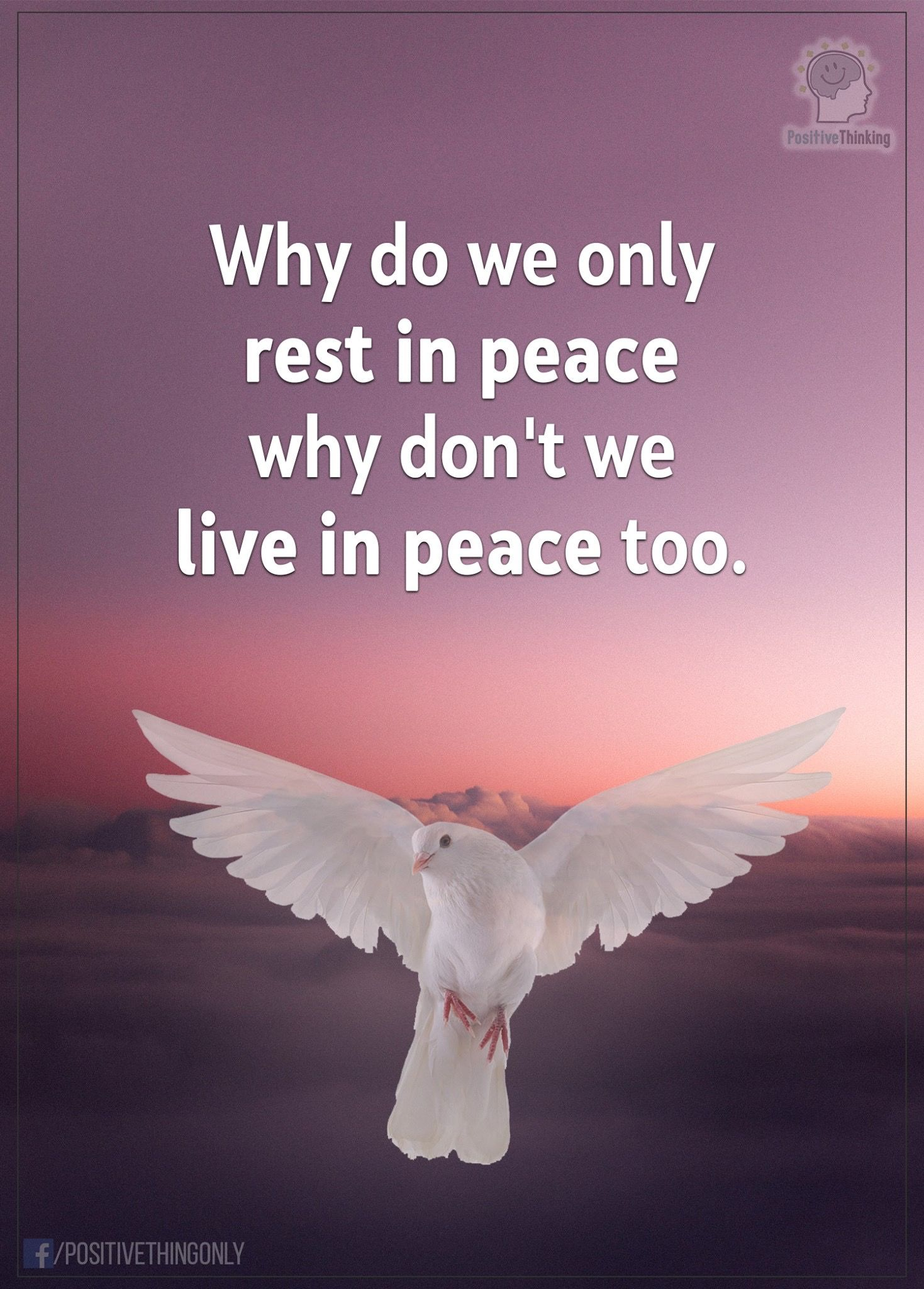 Live In Peace Motivational Memes Motivational Memes Positive Thinking Life Lessons