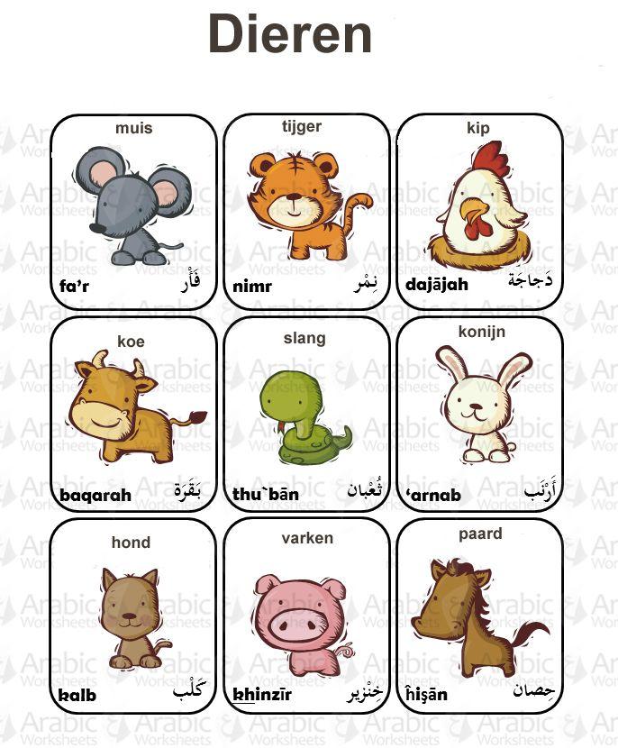 Dieren arabisch nederlands nt2 pinterest learning for Arabisch nederlands