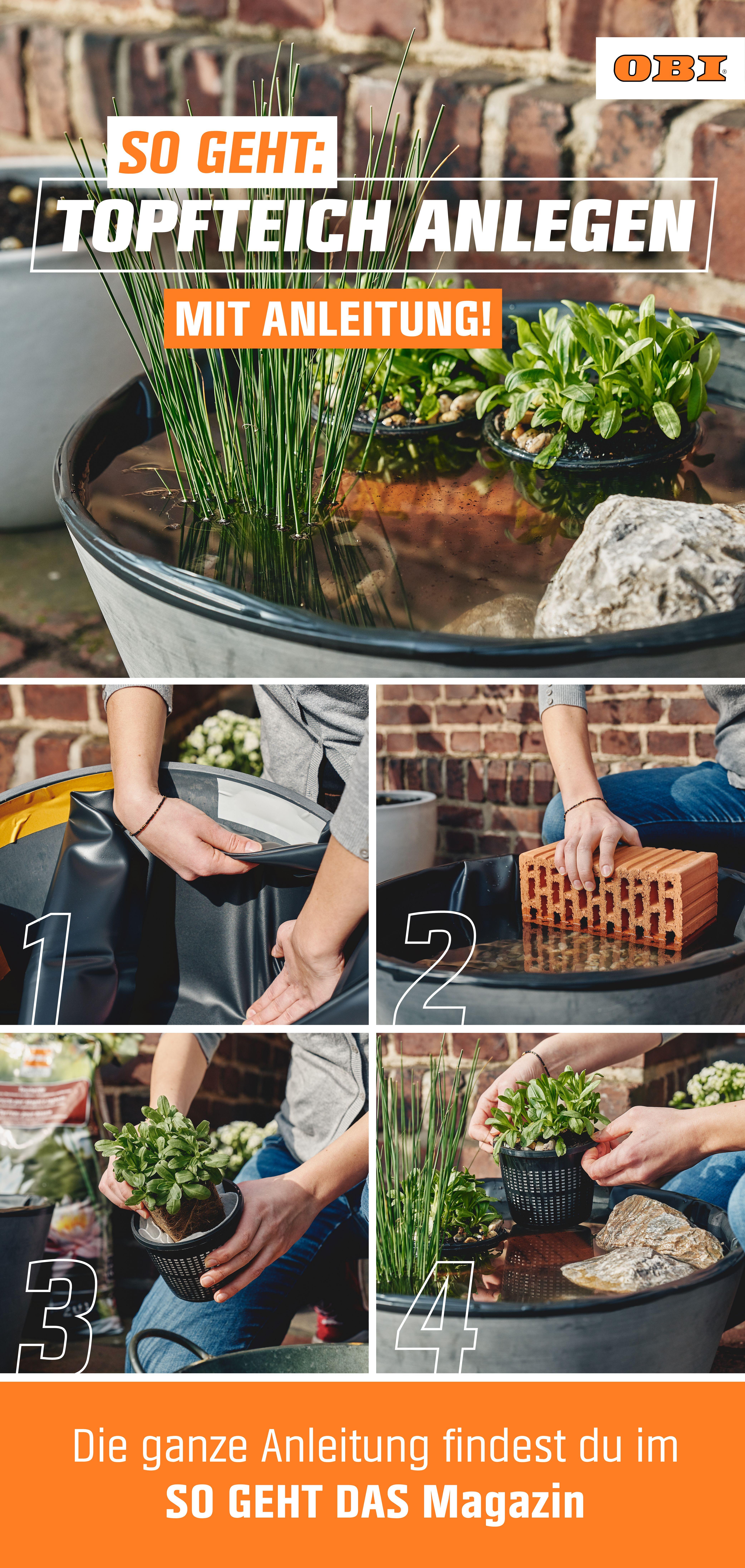 Ein Miniteich auf dem Balkon ist eine gute Alternative zu den klassischen Kübelpflanzen. Er bietet zudem ein Biotop für zahlreiche Pflanzen, Vögel und Insekten. Aber aufgepasst: Achte darauf, dass das Gewicht des Miniteiches nicht die Statik deines Balkons gefährdet! Wie dir dein Miniteich gelingt und worauf du achten solltest, zeigen wir dir in unserer Schritt-für-Schritt-Anleitung samt Video