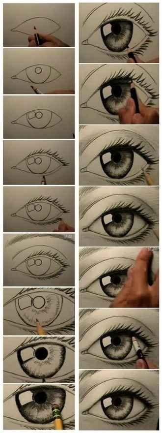 Photo of Eyes. | 17 Diagrams That Will Help You Draw (Almost) Anything