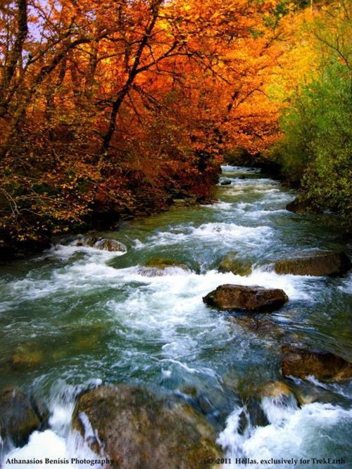 #autumnscenes