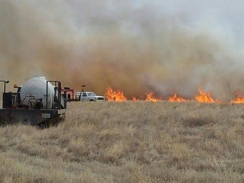 Published on Apr 28, 2013  http://www.mylocaltv.ca/ Covering the Local News of Swift Current and Southwest Saskatchewan. In this episode of Southwest TV News;    Volunteers Rally to Save Grasslands National Park  A weekend grassfire at Grasslands National Park brought volunteers together from across the Region as thousands of hectares of land were engulfed in flames.