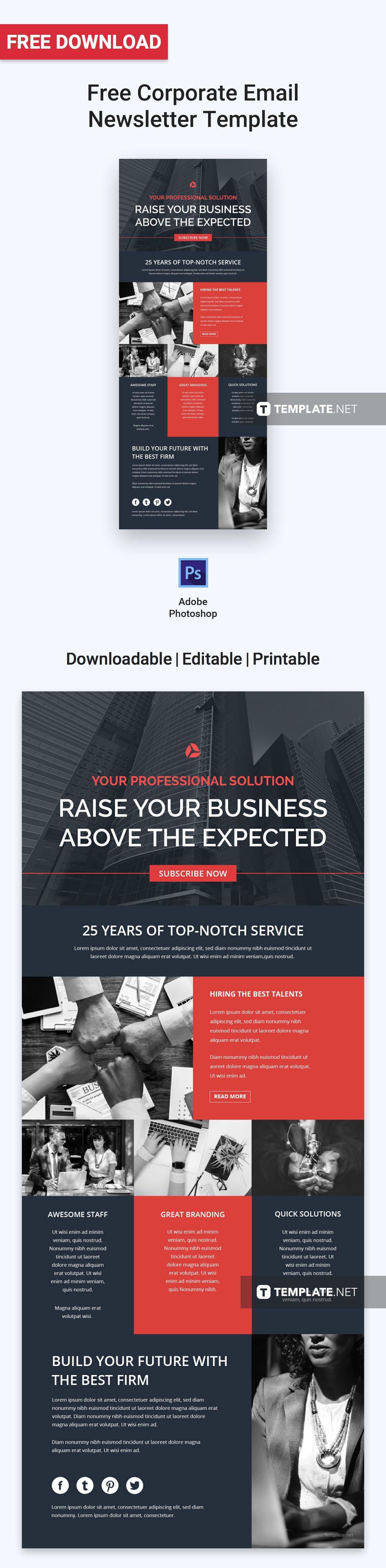 Free Corporate Email Newsletter Free Email Newsletters Templates