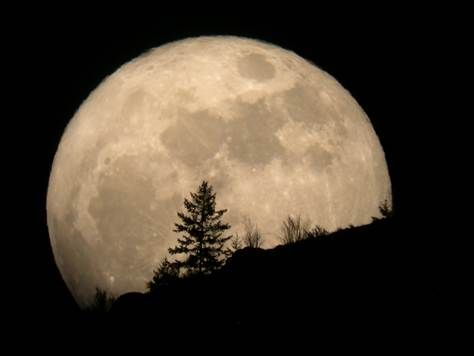 That's not just a full moon this week, it's a 'supermoon'  Perigee will be the nearest to Earth of any this year, so it will be living large