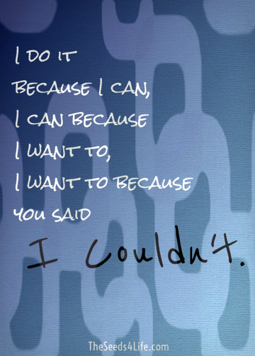 I do it because I can I can because I want to I want to because you said I couldnt