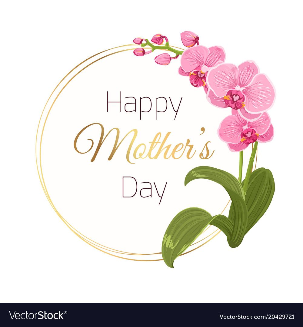Mothers Day Card Round Wreath Orchid Flower Branch Vector Image On Vectorstock In 2020 Floral Cards Holiday Floral Happy Mothers Day