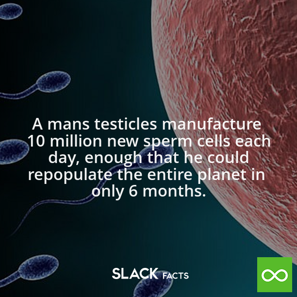 Amazing facts about sperm