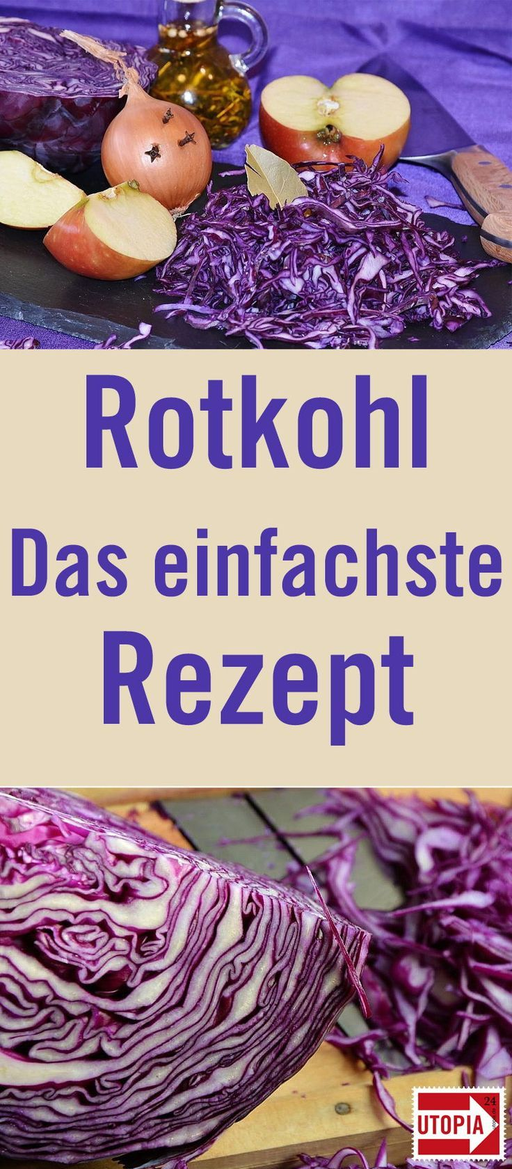 Rotkohl selber machen: Ein klassisches Rezept - Utopia.de
