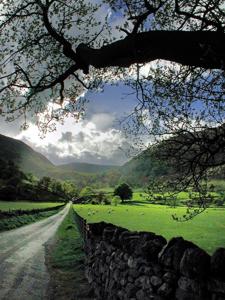 Beautiful Valley. Cumbria, UK (by Robert Louden)