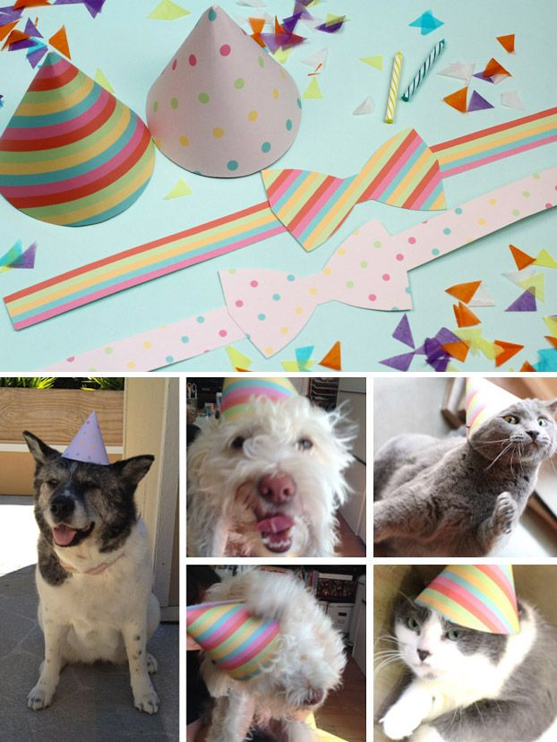 Printable Party Hats And Bow Ties For Your Pets Birthday