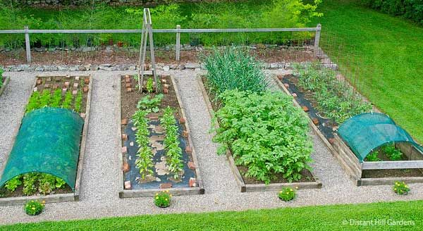 A Guide To Growing A Raised Bed Vegetable Garden. The Purpose Of Having A Raised  Bed Garden Include Increased Yields.