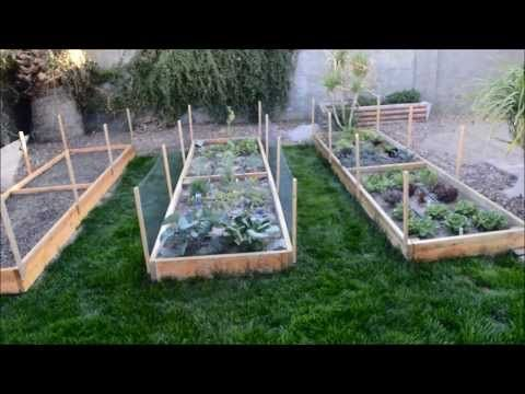Raised Garden Beds Ve able Garden in Phoenix Arizona