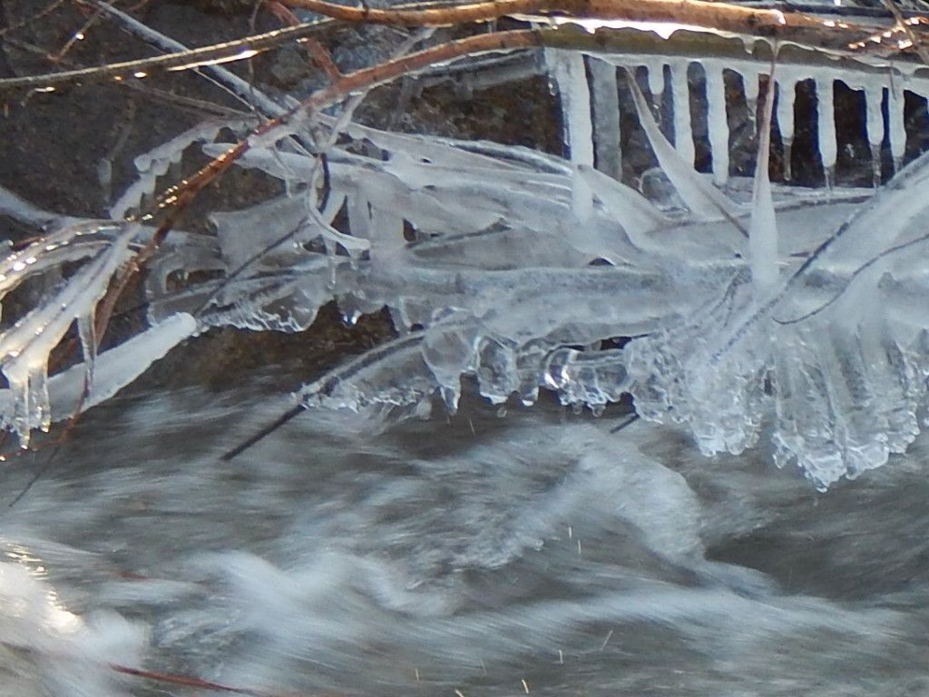 ICE CYCLES- PHOTO BY RHODA ELLEN STEVENS BOUNDS
