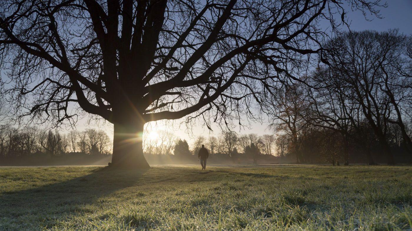 Winter walk at Morden Hall Park © National Trust Images/John Miller