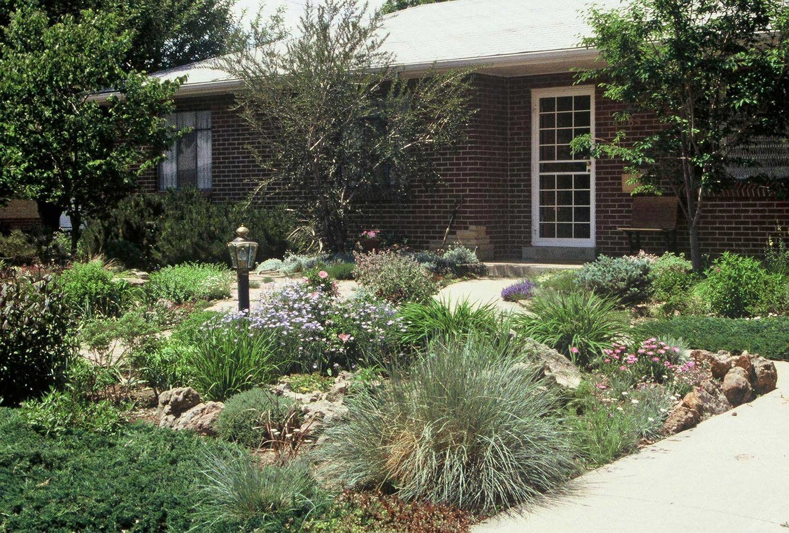Front yard without grass home design and decor reviews for Landscaping your yard