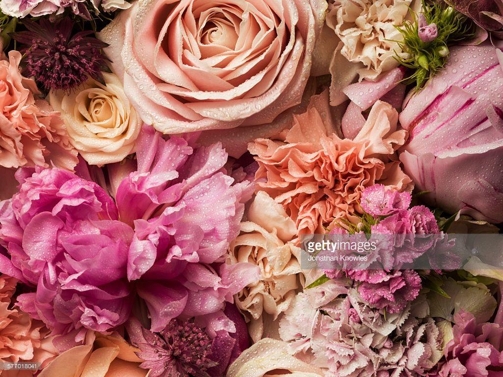 Full frame floral arrangement with dew