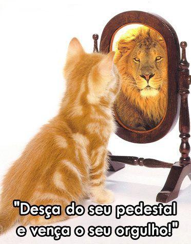Pr Fábio Silva