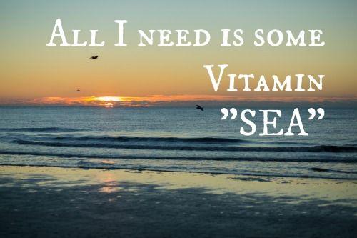 All I Need Is Some Vitamin  U0026quot Sea U0026quot