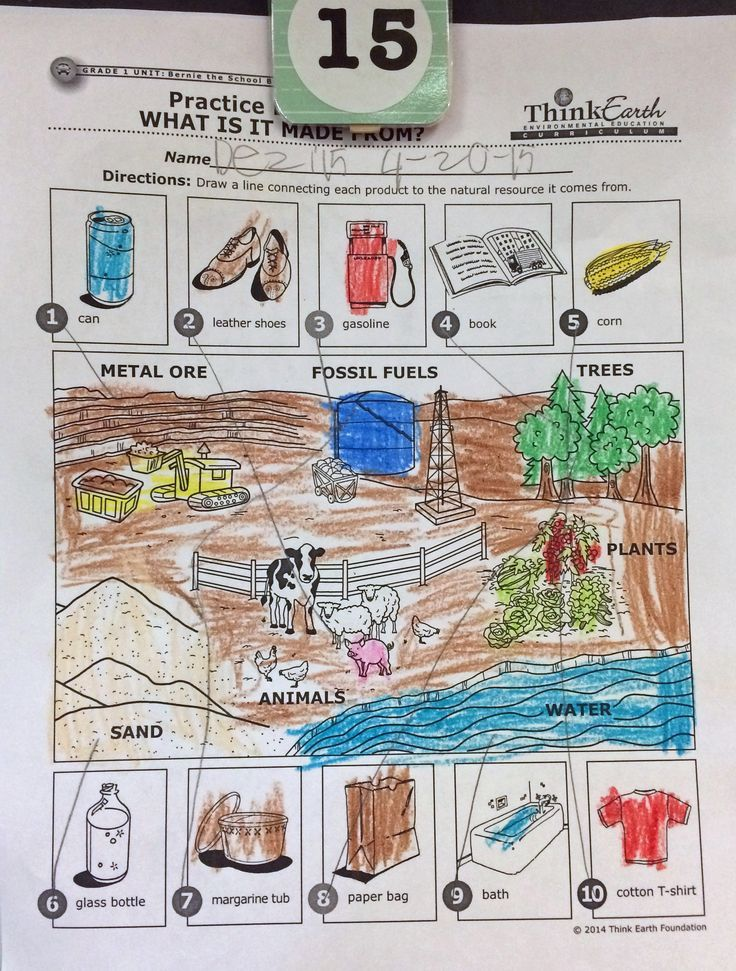 The first grade Think Earth unit teaches students about