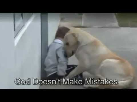 As if to rekindle our faith in dogs and their natural empathy with us hu...