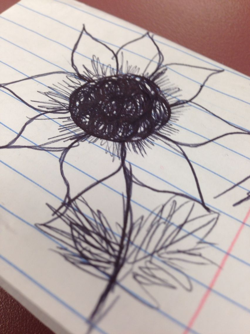 Pin by amber on my flower drawing pinterest