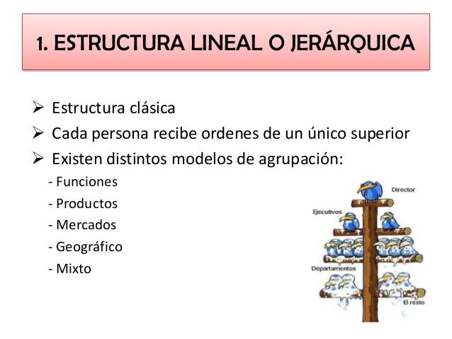 1 Estructura Lineal O Jerarquica Estructura Lineal
