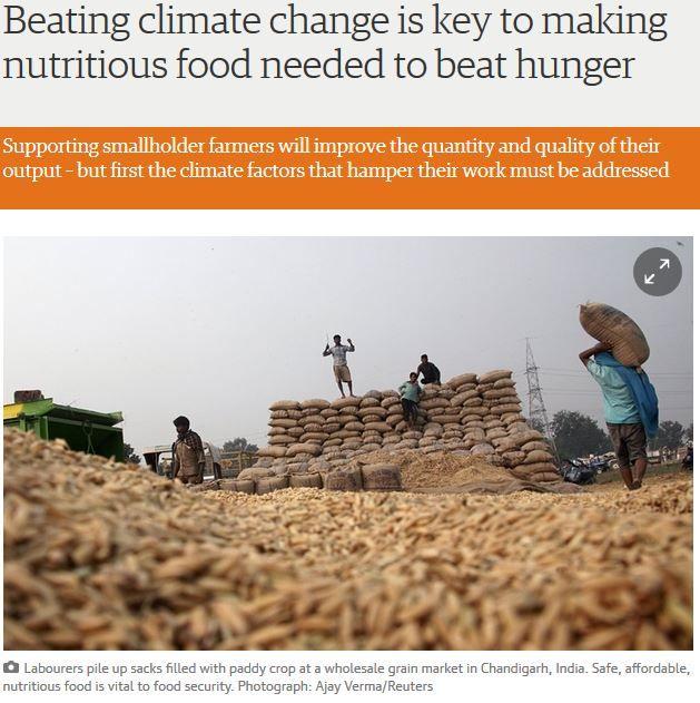 http://www.theguardian.com/global-development/2015/oct/19/hunger-nutrition-climate-change-smallholder-farmers-eu