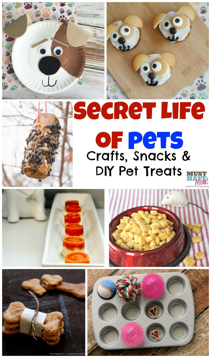 Pets activities and food ideas! Fun themed Secret Life of