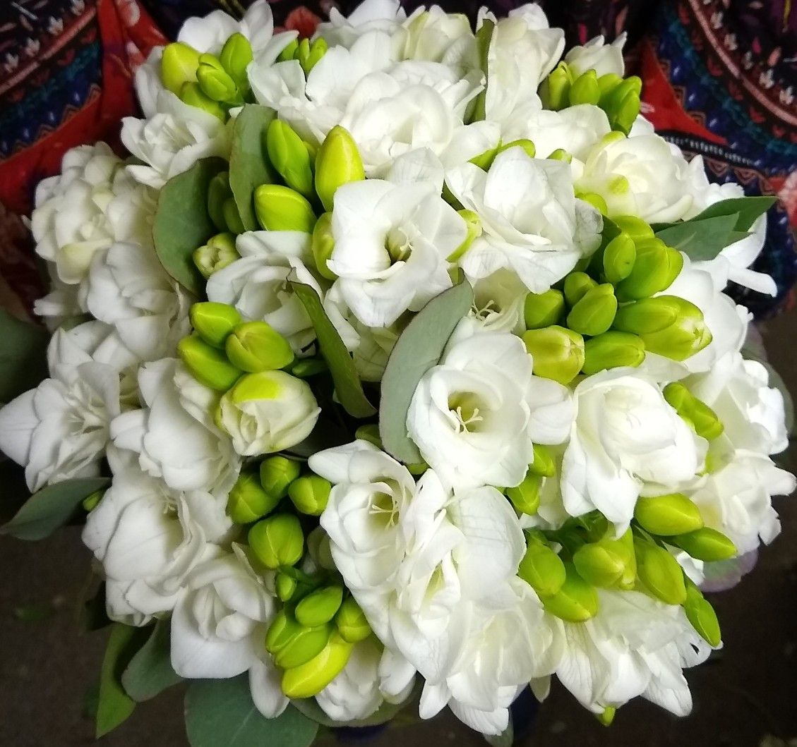 All White Freesia Wedding Bouquet Wedding Bouquets Freesia Wedding Bouquet Bridal Flowers